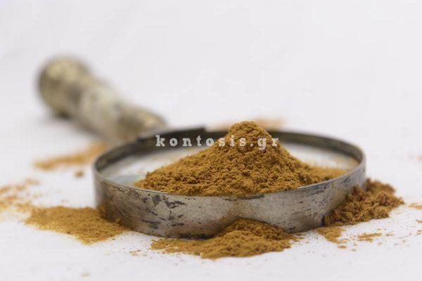 kanela-indonisias